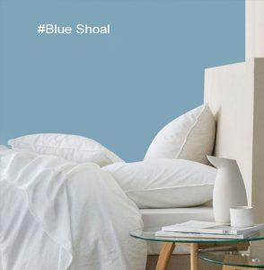 idée déco chambre adulte bleue